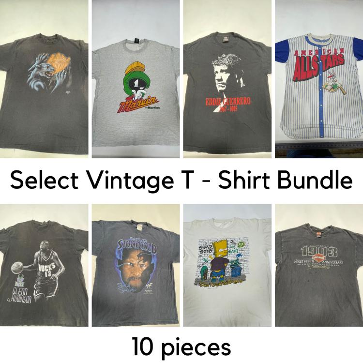 Picture of Select Vintage T - Shirt Bundle - 10 pieces